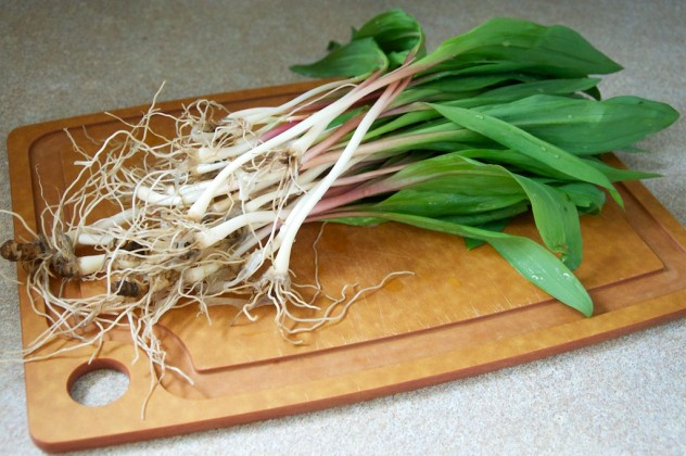 Pasta with Tender Ramps Recipe // Dula Notes