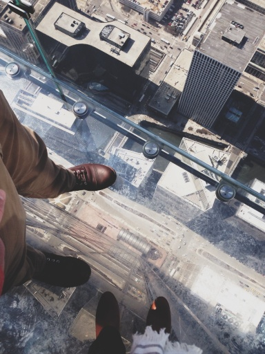 Willis Tower View Chicago // Dula Notes
