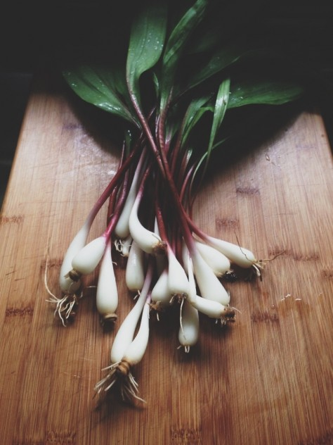 Seasonal Snapshots - Ramps  // Dula Notes