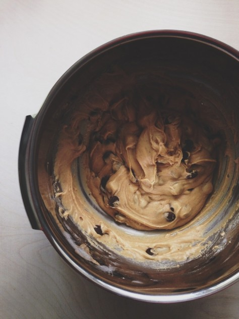 Seasonal Snapshots - Chocolate Chip Cookie Dough  // Dula Notes