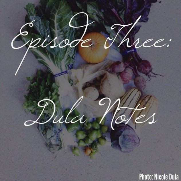 Dula Notes on the All You Can Eat Podcast // www.dulanotes.com @nicoledula