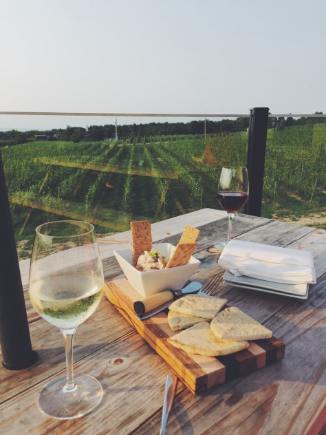 View From Bonobo Winery In Traverse City, Michigan // @nicoledula